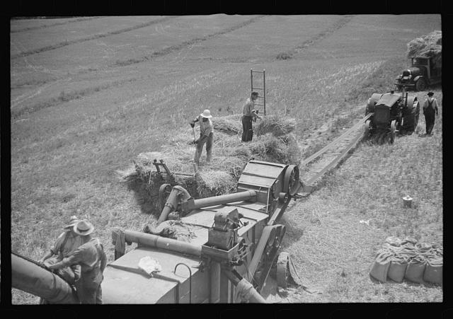 [Untitled photo, possibly related to: Threshing oats, Brookeville, Maryland]