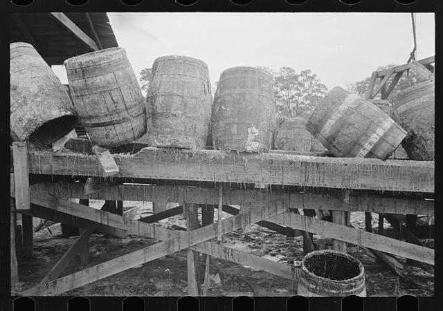 Empty barrels which had contained pitch from the turpentine pine at still, State Line, Mississippi