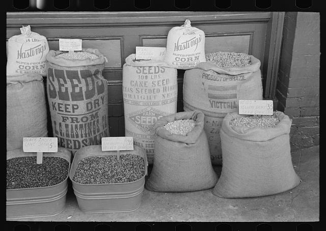 Seed displayed for sale, San Augustine, Texas