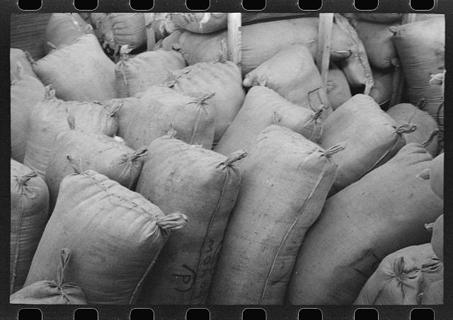 [Untitled photo, possibly related to: Sacks of mohair in storage at the warehouse of the Kimble Wool and Mohair Company, Junction, Texas]