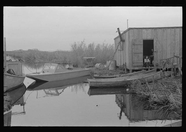 [Untitled photo, possibly related to: Spanish muskrat trappers' camp on bay or in marshes near Delacroix Island, Louisiana]