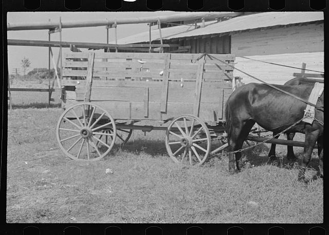 [Untitled photo, possibly related to: At the cotton gin. Cotton gin and wagons. Hale County, Alabama]
