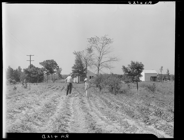 Settlers on McComb Homesteads at work in their garden. Pike County, Mississippi