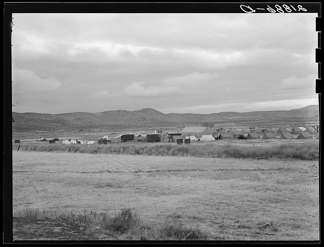 Wide view of the first mobile camp unit (FSA - Farm Security Administration), situated in the Klamath Basin, Oregon. See general caption 62