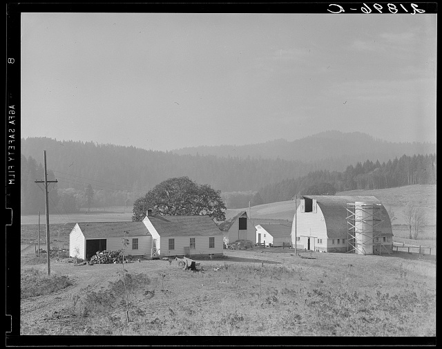 Unit no. 32 of Yamhill farms, Oregon: sewage disposal, electrification, twelve-cow dairy barn, silo under construction and five-room house. See general captions 57