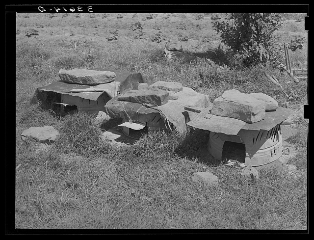 Chicken houses belonging to tenant farmer near Sallisaw, Oklahoma