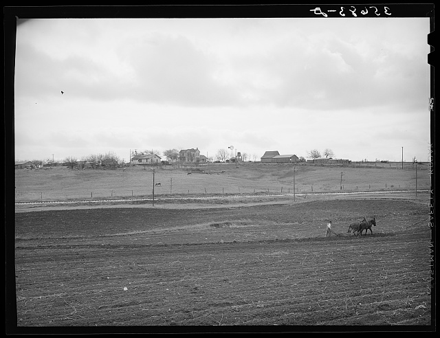 Spring plowing in Williamson County, Texas