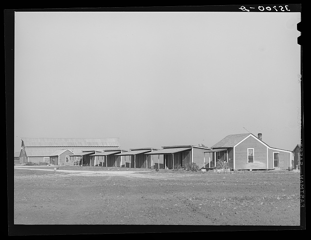 Houses for permanent and migratory workers on large cotton farm in Refugio County, Texas