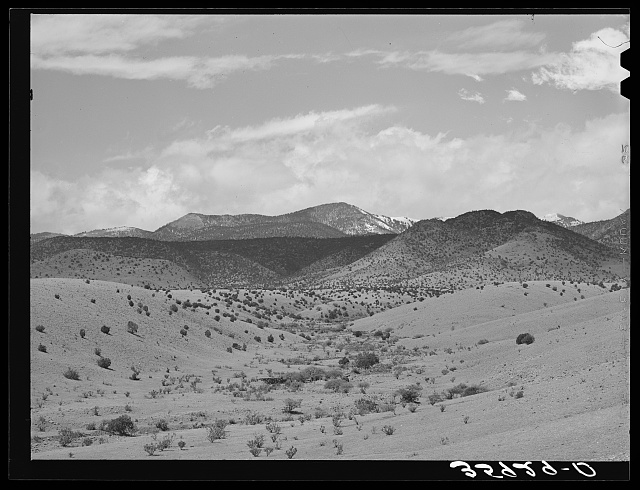 Desert wash with snow covered mountains in the background. Socorro County, New Mexico
