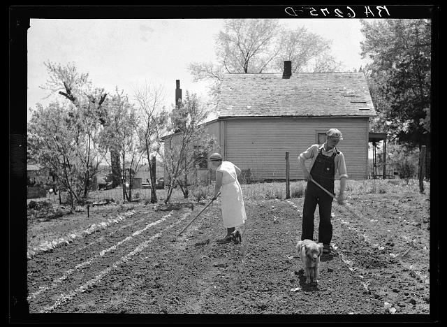 Off to a new start. Marion Hills and wife, rehabilitation clients, in garden of their farm. Center County, Iowa