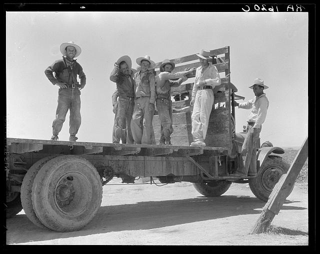 Off for the melon fields (Mexican labor). Imperial Valley, California