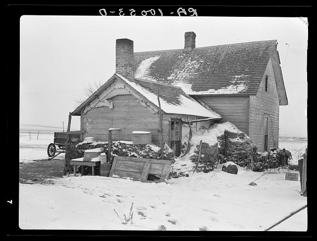 House on Edmond William's farm banked with manure. Straw or manure banking is common practice in Iowa, but good houses require little or no banking