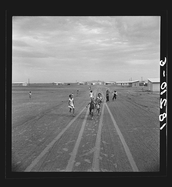 Farm Security Administration Casa Grande project, Arizona. Large-scale corporate farming by sixty-two families who divide profits. Children in this group came from eight different states