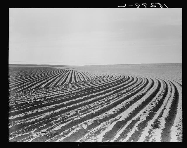 Contour plowing on mechanized farm of the Texas Panhandle