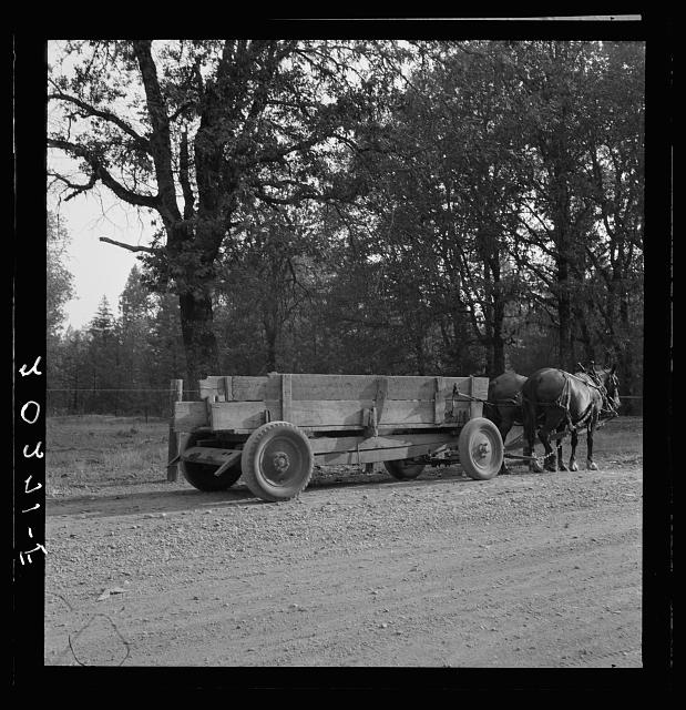 "Wagon built on the farm utilizing parts of wrecked Dodge truck. ""The team can haul three times as much."" Oregon, Kirby (Josephine County)"