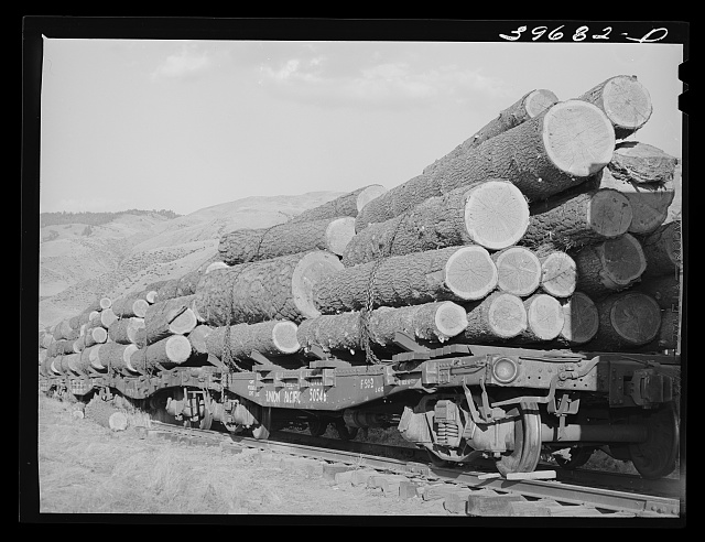 Logs on flat cars at Cascade, Idaho. The state of Idaho now has about 81 billion feet of old growth lumber standing, 8.8 percent is owned by the State; 30.3 percent privately owned and 60.9 percent by the federal government