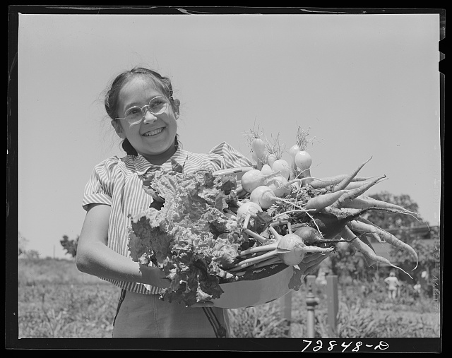 Marileeann Simpson holds a pan of vegetables freshly gathered from her family's garden at the FSA (Farm Security Administration) farm workers community. Yuba City, California