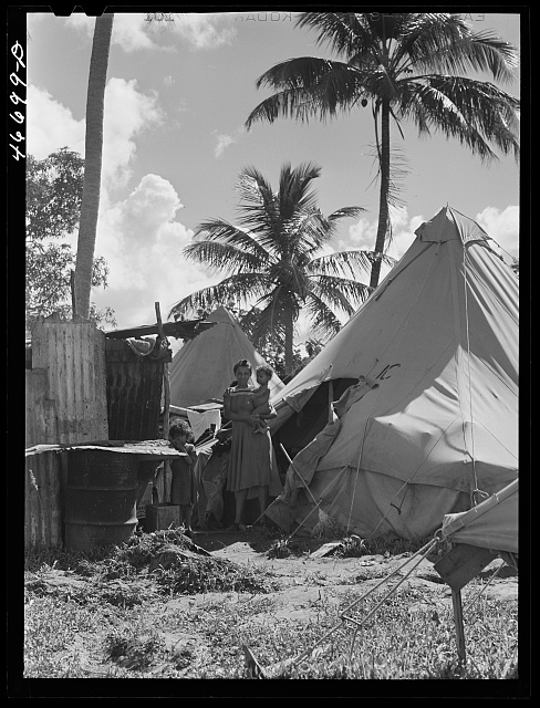 Bayamon, Puerto Rico (vicinity). Tent colony of twenty-five families who had been squatters on land taken over the Navy. They are to be resettled by the land authority