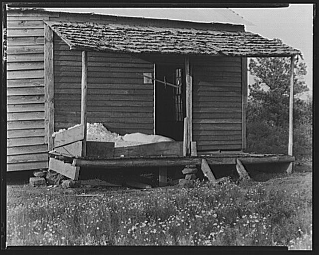 Cotton on the porch of Bud Fields' home. Hale County, Alabama
