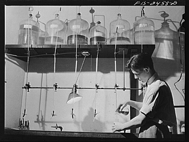George Craker, freshman, working in the Soils Laboratory in Agricultural Hall, Iowa State College. Ames, Iowa