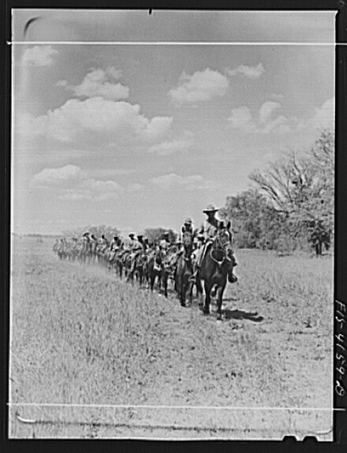 Fort Riley, Kansas. During a field problem of the cavalry