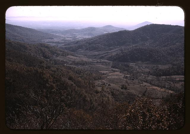 View along the Skyline Drive, Va.