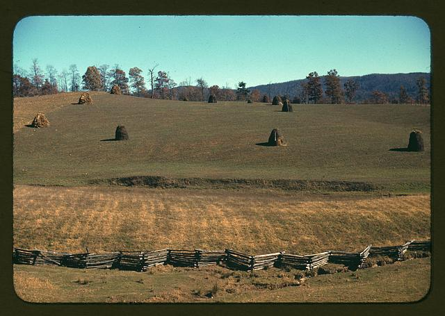 [Field of a mountain farm along the Skyline Drive in Virginia]