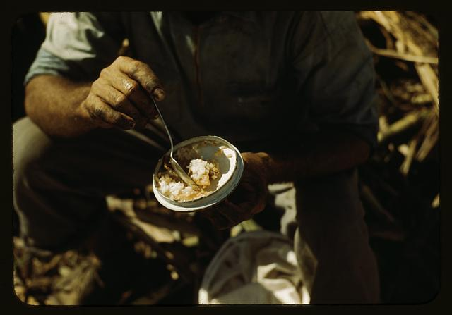 Rice and papaya in the lunch of a sugar worker on a plantation, vicinity of Guanica, Puerto Rico?