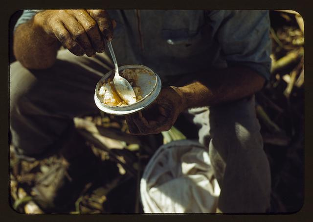 Rice in a lunch of a sugar worker on a plantation, vicinity of Guanica, Puerto Rico?