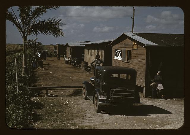 Houses which have been condemned by the Board of Health, but are still occupied by Negro Migratory workers, Belle Glade, Fla.