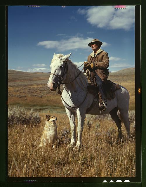 Shepherd with his horse and dog on Gravelly Range, Madison County, Montana