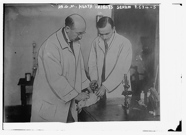 Dr. Heath injects serum [rabbit]