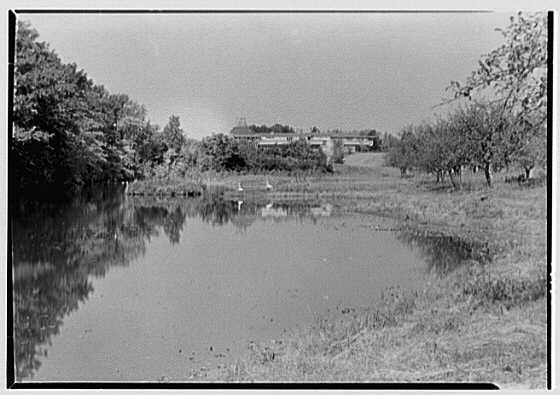 Herbert F. Johnson, Jr., Wingspread, residence in Racine, Wisconsin. House from distance, in pond