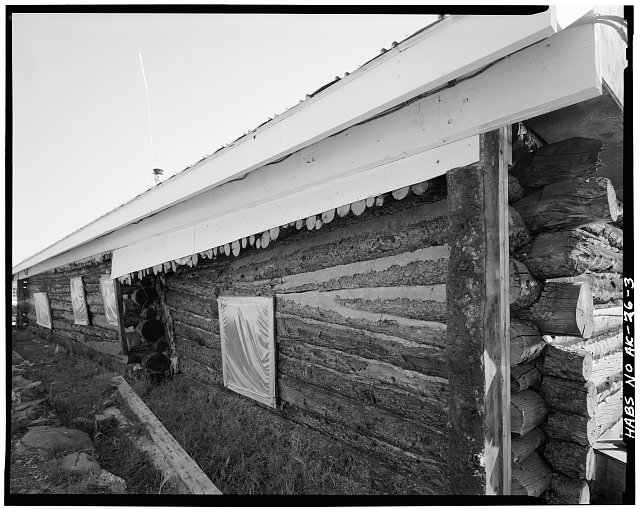3.  DETAIL OF NORTH WALL, SHOWING WHERE BUILDER DID NOT ALTERNATE THICK ENDS OF LOGS - Sourdough Lodge, Mile 147.5, Richardson Highway, Gakona, Valdez-Cordova Census Area, AK