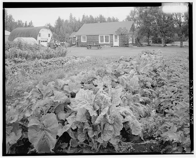 1.  BARN AND HOUSE, WITH VEGETABLE GARDEN IN FOREGROUND - Farm, Glenn Highway & Scott Road, Palmer, Matanuska-Susitna Borough, AK