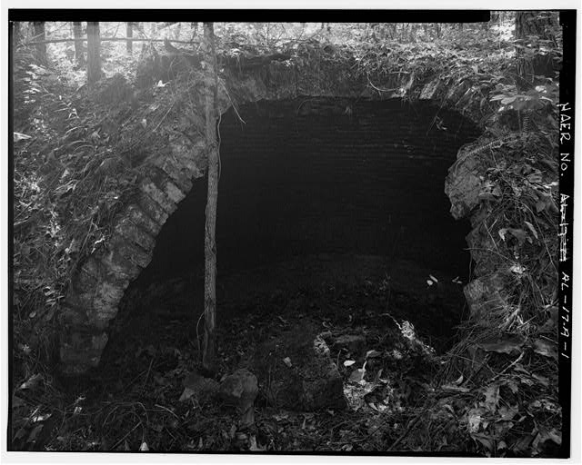 BEEHIVE COKE OVENS, DETAIL, EXTERIOR SOUTHEAST. - Brookside Coal Mine, Beehive Coke Ovens, Mount Olive Road, North of Five Mile Creek Bridge, Brookside, Jefferson County, AL