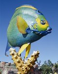 Fish carving, Florida Keys