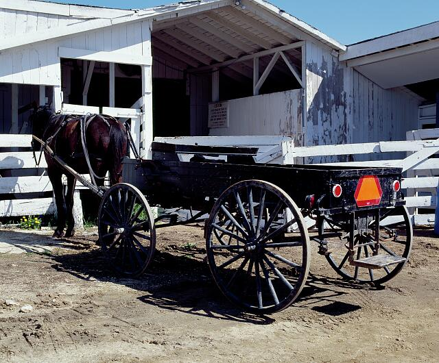An Amish horse and wagon, hitched in town on market day, Lancaster, Pennsylvania