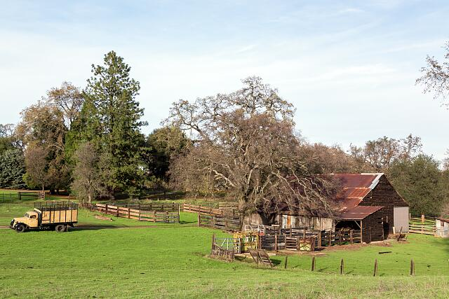 A rural scene in Buttle County, east of Oroville, California