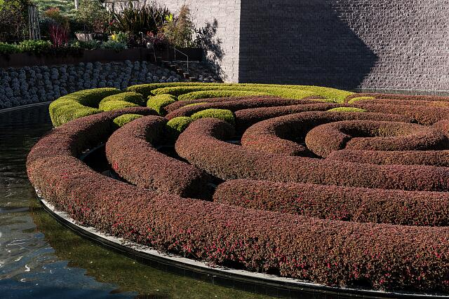 A hedge maze at the Getty Center in Los Angeles, California, one of two art museums that are part of the Getty Museum