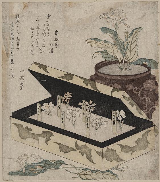Sakurasō