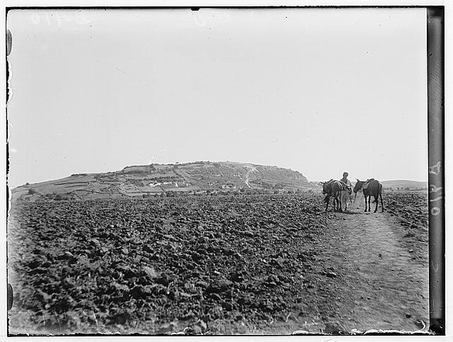 Various results of the war. Jebel Muntar near Gaza