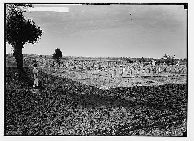Various results of the war. War cemetery at Gaza, old view.