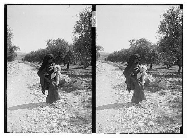 Bedouin woman on road holding wool spindle