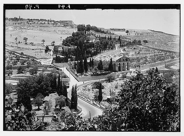 Garden of Gethsemane. Lower slopes of Olivet showing the new basilica