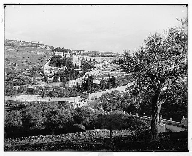 Jerusalem (El-Kouds). [Mount of Olives from the northwest]