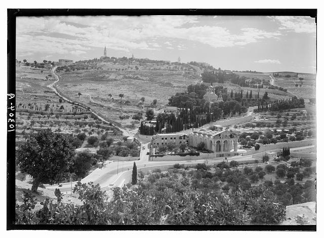 Garden of Gethsemane & Olivet from city wall