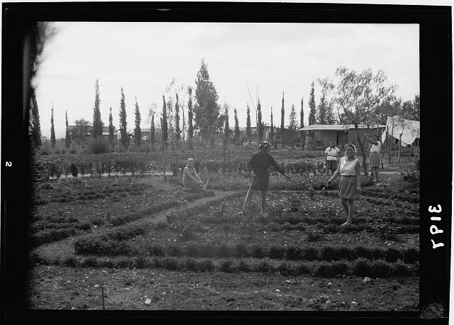 Nahalal. Girls' Agricultural Training School. The flower garden