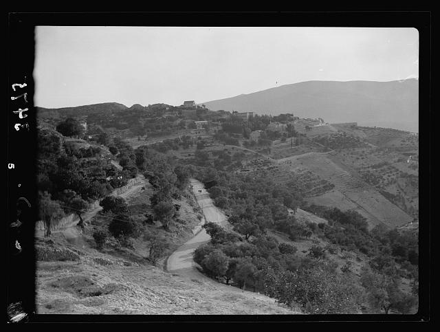 Northern views. The ascent to Safad. Among olive orchards