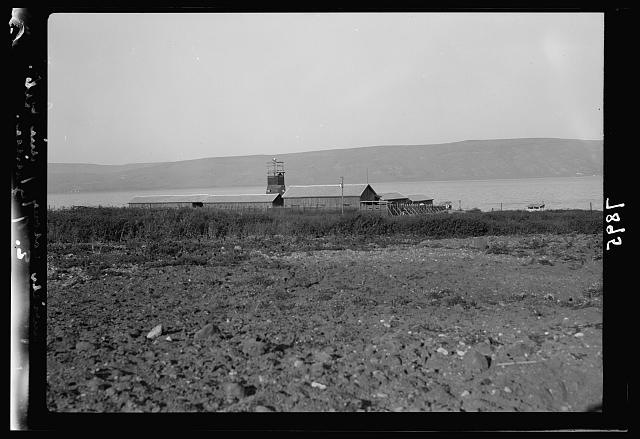 Ain Geb. Jewish settlement on the east side of S. Galilee. The settlement from the East. Sea in background